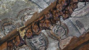 """200 de lilieci aparținând unor specii protejate și-au făcut adăpost într-o biserică de lemn din Sălaj"""""""