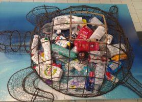 Kaufland anunță prima infrastructură de reciclare a produselor de îngrijire personală și a locuinței